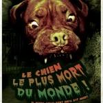 Le chien le plus mort du monde - Atelmier belle Lurette